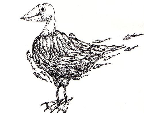 FishDuck