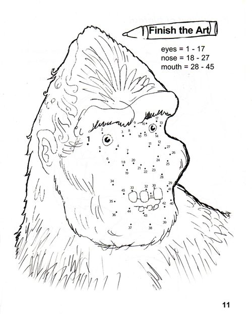 Squatch Drawing Project